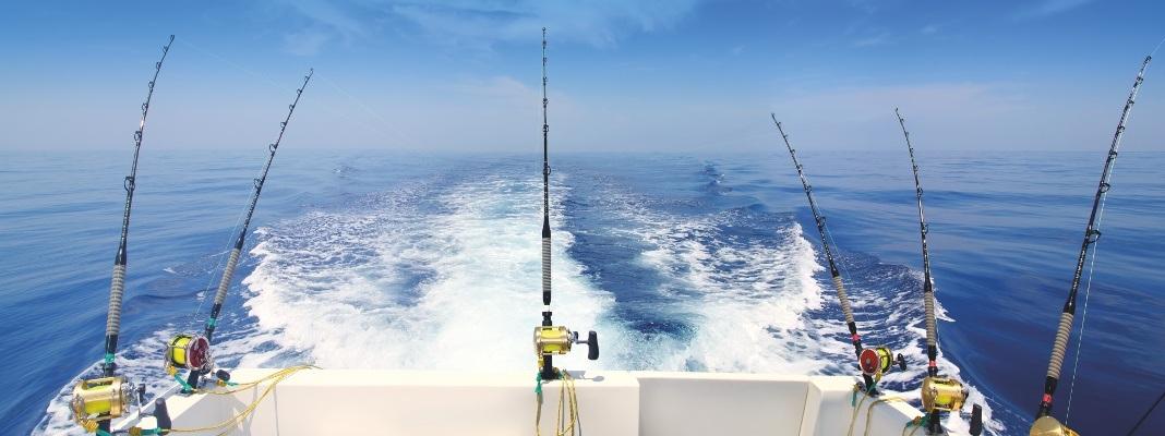 catalogo acque marittime
